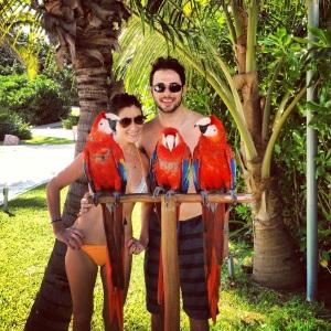 cancun 2013 parrots